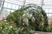 Công viên thực vật 5 châu tại Nha Trang mở cửa đón khách