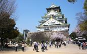 Jetstar khai trương 2 đường bay Hà Nội/Đà Nẵng - Osaka (Nhật Bản)