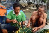Cầu kỳ săn cù kỳ - loài hải sản giá trị vô song ở biển Quảng Ninh