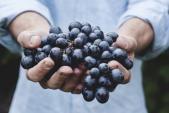 Da trắng mịn láng cóng nhờ mẹo kết hợp các siêu thực phẩm
