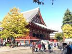 Đến Nhật Bản thưởng ngoạn mùa lá đỏ với chi phí từ 21 triệu đồng