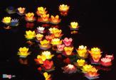 5 hoạt động không thể bỏ lỡ tại đêm rằm Hội An giữa lòng Sài Gòn