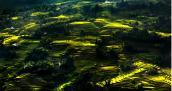Trắc nghiệm: Đi đâu trong những ngày mùa thu đất Việt?