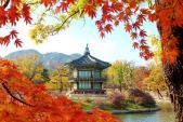 Những địa điểm không thể bỏ qua khi du lịch Hàn Quốc mùa thu