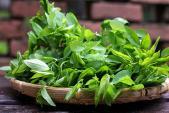 Tuyệt chiêu giảm ngay 5 kg trong một tuần bằng rau ngót đơn giản mà hiệu quả