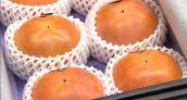 Choáng váng hồng siêu ngọt giá 100 triệu đồng/2 quả