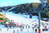 Bay trên những dốc tuyết xứ Hàn