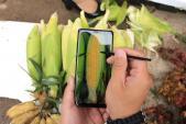 4 gợi ý chụp ảnh du lịch 'nghìn like'