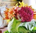 Bình hoa bắp cải siêu độc trang trí nhà ngày Tết
