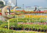 Người dân và du khách sẽ được ngắm pháo hoa rực rỡ đêm giao thừa tại Đà Nẵng