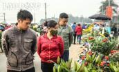 Thủ phủ hoa lớn nhất miền Bắc đông nghịt dân buôn ngày Valentine