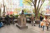 Câu chuyện về bức tượng Hachiko - chú chó trung thành ở Nhật Bản