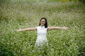 Mãn nhãn với vườn hoa tam giác mạch ngay ngoại ô Hà Nội