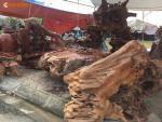 Ảnh: Bộ bàn ghế gỗ lũa hàng khủng giá tiền tỷ không bán