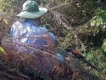 Tận diệt chim rừng mùa sinh sản: Đam mê hay tội ác?