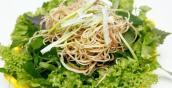 Khuẩn E. coli đang rình rập, cần làm ngay những điều sau để tránh