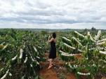 Kinh nghiệm du lịch Kon Tum tự túc, tiết kiệm siêu chi tiết
