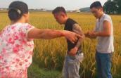 Người dân vây bắt, trói thanh niên xăm trổ ở ruộng lúa