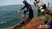 """Đi """"săn"""" loài cá bé tí, khó bắt, kiếm cả triệu đồng mỗi ngày"""