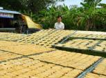 Thèm thuồng khi đến làng chuối khô 100 năm làm hàng bán Tết