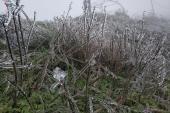 Ngắm vẻ đẹp kỳ ảo của băng tuyết trên đỉnh Mẫu Sơn
