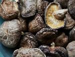 Nấm hương Nhật giá 10 triệu/kg vẫn được