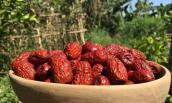 Chị em lùng mua đặc sản táo đỏ Tàu ngon bổ 300.000 đồng/kg