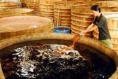 Dự thảo quy phạm thực hành sản xuất nước mắm: