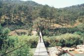 Khám phá cầu gỗ treo đẹp như phim ở Đà Lạt ai có