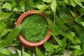 Himalaya – kế thừa di sản Ayurveda cho làn da khỏe mạnh và sạch mụn