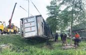 Xe tải lật nhào, đàn heo 60 con tràn ra đại lộ ở Sài Gòn