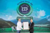 Hệ thống 'resort' bò sữa global G.A.P giúp Vinamilk cung cấp 5.5 triệu hộp sữa tươi mỗi ngày