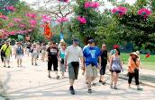 Khách du lịch ghé thăm Việt Nam liên tục đạt trên mức 1,4 triệu lượt/tháng từ đầu năm
