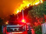 Tạm giữ nghi can gây cháy rừng phòng hộ Hà Tĩnh
