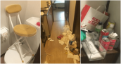 Ga trải giường, nắp bồn cầu: 60% khách Trung Quốc trộm đồ trong khách sạn Nhật