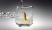 Tiêu thụ quá nhiều nước không hề tốt cho sức khỏe