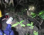 Du khách tham quan bán đảo Sơn Trà gặp nạn, một người ứng cứu tử vong