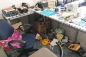 Băng trộm đi ôtô trộm két sắt của tiệm bán điện thoại