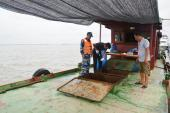 Tạm giữ 35.000 lít dầu DO không rõ nguồn gốc trên vùng biển Quảng Ninh và Hải Phòng