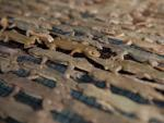 Đặc sản thằn lằn khô bốc mùi hôi thối khiến thực khách chạy