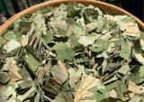 Loại lá mọc tràn ao bùn Việt Nam, 400 ngàn/kg, chị em vẫn chuộng mua