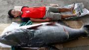 Câu được cá khủng 130kg ở Đắk Lắk