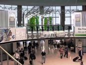 """Tận mục vườn đầy ắp rau """"thẳng đứng"""" trong sân bay"""