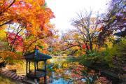 Ngắm Seoul hoài cổ trong mùa thu tháng 9