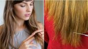 10 nguyên nhân thường gặp và cách khắc phục triệt để tình trạng tóc hư tổn