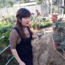 Mê mẩn ngắm vườn hoa Tết ở Sơn La của mẹ trẻ 9X người Thái