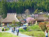 Khám phá cuộc sống nông thôn Nhật Bản trên truyền hình Việt Nam