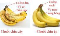 Cách phân biệt quả chín cây và chín ép bằng mắt thường
