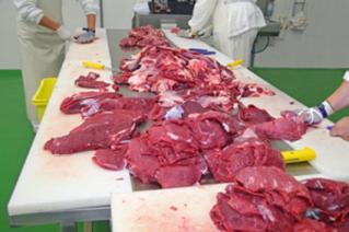 Đường dây buôn bán thịt nhiễm khuẩn xâm nhập thị trường Canada